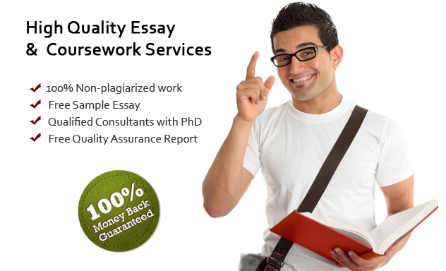 holding company essay
